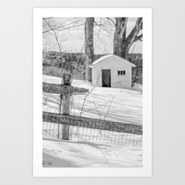 Long cold winter Art Print