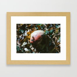 0001 Framed Art Print