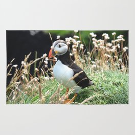 Puffin Therapy Rug