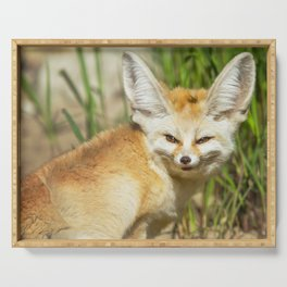 Fennec Fox Serving Tray