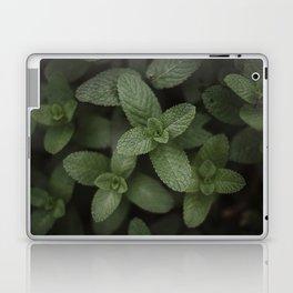 Mint at a desert farm in The Negev, Israel Laptop & iPad Skin