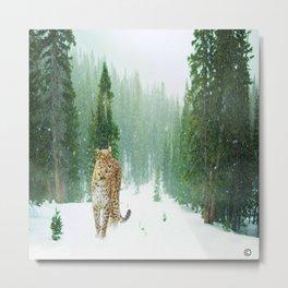 Leopard Seeking Food in a Gentle Snow Metal Print