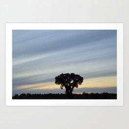 Striped prairie sky... Art Print