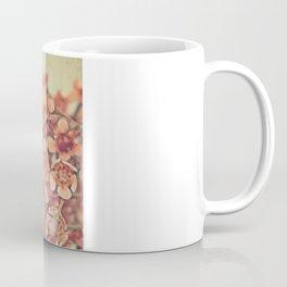 Orange Waxflowers Coffee Mug