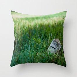 wheat and stone Throw Pillow