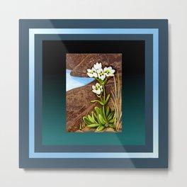 High Country Gentian Flower Metal Print