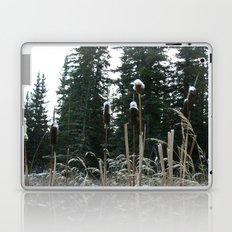 Falltime in Watervalley Laptop & iPad Skin