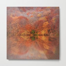 A Glimpse Of Autumn Metal Print