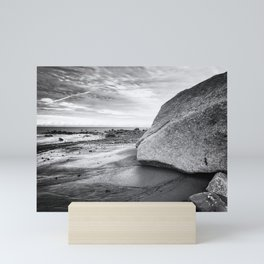 Kenai Beach bw Mini Art Print