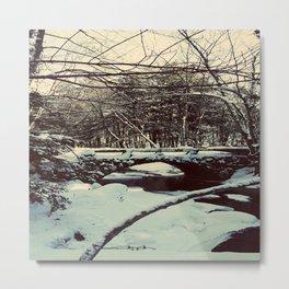 Snowy Bridge in Vaughan's Woods Metal Print