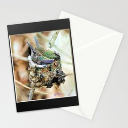 The Hummingbird Nest. © J&S Montague. Stationery Cards
