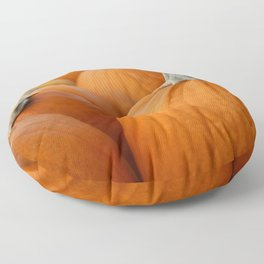 Pumpkin 3 Floor Pillow