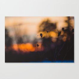 Imperfection Canvas Print
