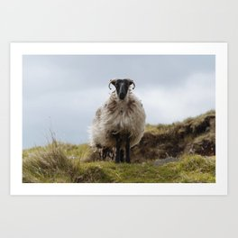 Who are ewe? Art Print