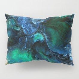Terrestre2 Pillow Sham