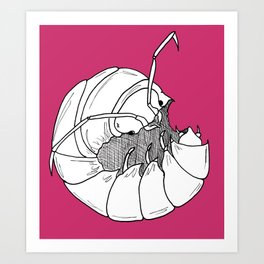Woodlouse Art Print