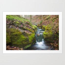 Compton Gardens Waterfall - Northwest Arkansas Art Print