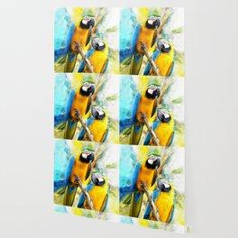 Macaw friends Wallpaper