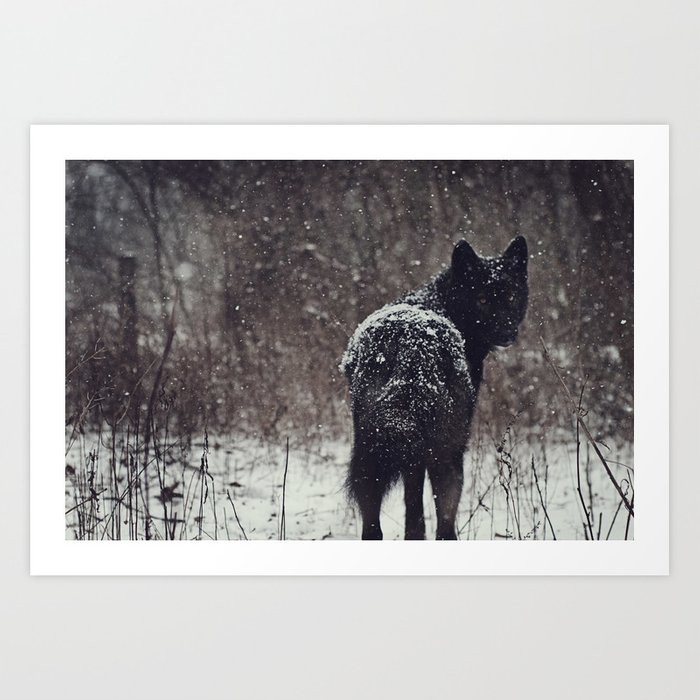Snow Covered Art Print