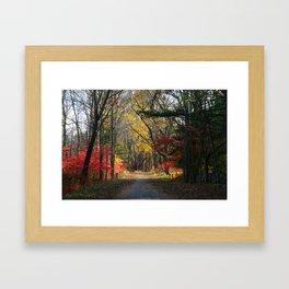 Autumn Paths Framed Art Print