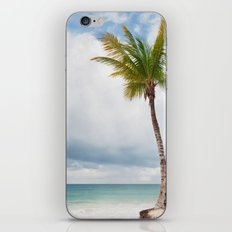 Mexico Palm  iPhone & iPod Skin