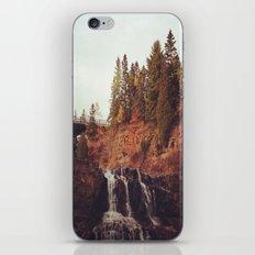 Gooseberry Falls iPhone & iPod Skin