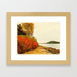 Seargant Drive, MDI, Maine Framed Art Print