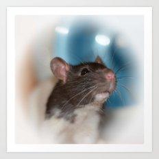 The Rat Art Print