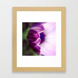 Purple Dome Framed Art Print