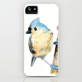 Tufted Titmouse by Teresa Thompson iPhone Case