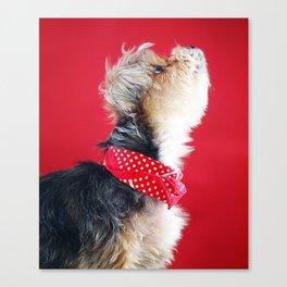 Super Pets Series 1 - Moose Howl Canvas Print