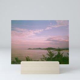 Daydreaming in the nature of Ferrugem beach Mini Art Print