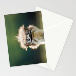 Hi, how are you? Stationery Cards