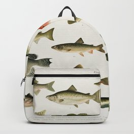 Illustrated North America Game Fish Identification Chart Backpack