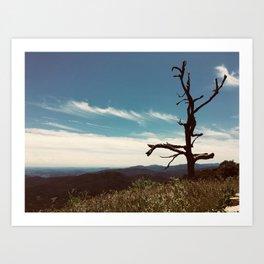 The Cool Dancer Tree Art Print