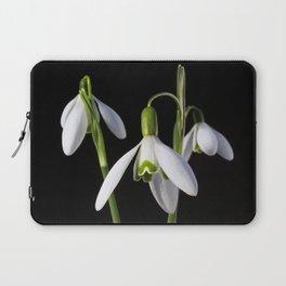 Spring Springs Eternal Laptop Sleeve