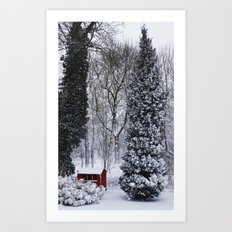 Winter in my garden Art Print