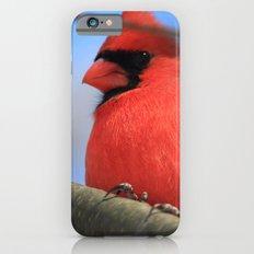 The Cardinal Portrait iPhone 6s Slim Case