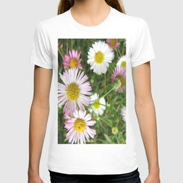 Daisies in the Grass T-shirt