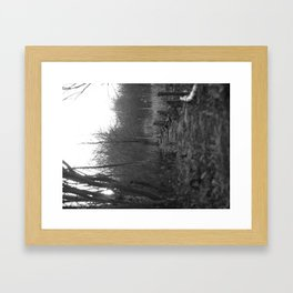 Path through the Marshes Framed Art Print