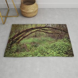 Arch of Jericho Rug