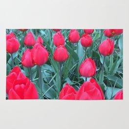 Full Bloom In Holland Rug