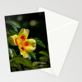 simply colourful Stationery Cards