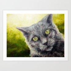 Kitty in the Summer Sun Art Print
