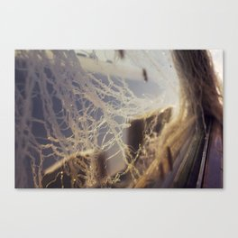 (untitled)  Canvas Print