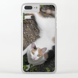 Endora Clear iPhone Case