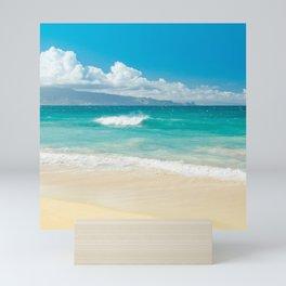 Hawaii Beach Treasures Mini Art Print