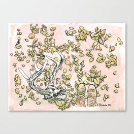 Wood Wanderings Canvas Print