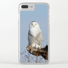 Divinity Clear iPhone Case