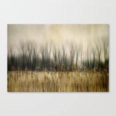 Marsh Edge Canvas Print